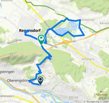 Entspannende Route in Regensdorf