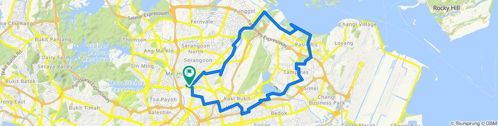 38 km Upp Serangoon- pasir ris- pungol - serangoon