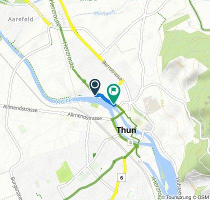 Langsame Fahrt in Thunsees