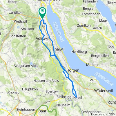 Wollishofen Gattiker-Weiher Horgenberg Hirzel Dream