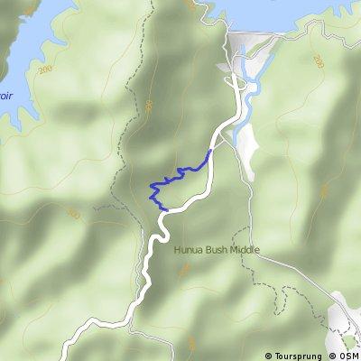Hunua Ranges, downhill track