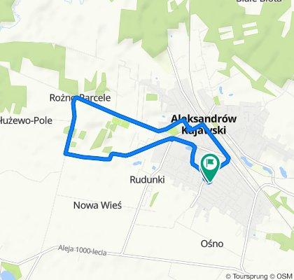 Umiarkowana trasa w Aleksandrów Kujawski