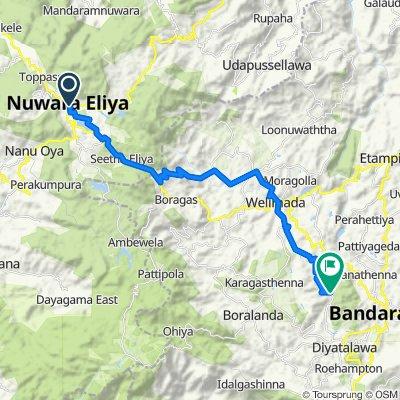 Nuwara Eliya - Bandarawela