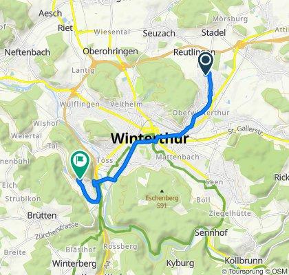 Einfache Fahrt in Winterthur
