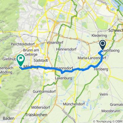 Langsame Fahrt in Hinterbrühl