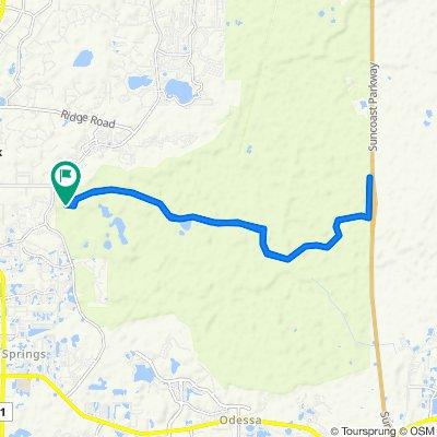 Wilderness Park Blvd, New Port Richey to 3543 Starkey Blvd, New Port Richey