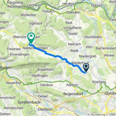 Moderate Route in Niederweningen