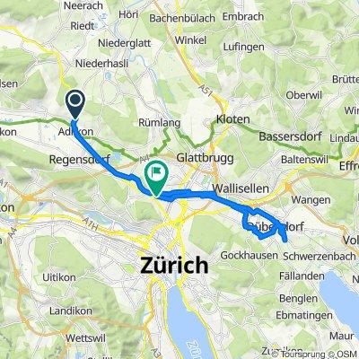 Entspannende Route in Zürich