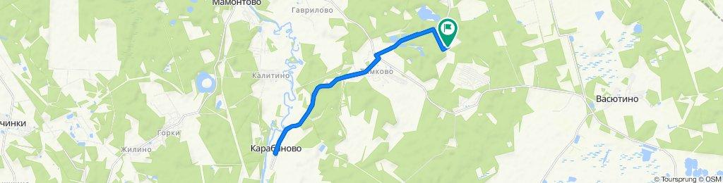 маршрут 16 ем КАРАБАНОВО