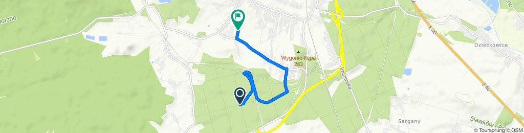 Zrelaksowana trasa w Mysłowice