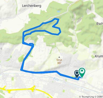 Langsame Fahrt in Eislingen/Fils