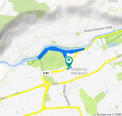 Strada Plopilor 65, Cluj-Napoca to Strada Plopilor 65, Cluj-Napoca