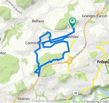 Route stable en Givisiez