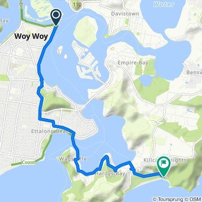 Woy Woy to putty beach via Ferry (43 min)