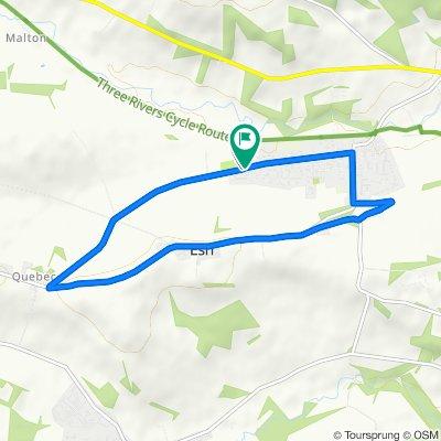 Langley Park 5 Mile Loop