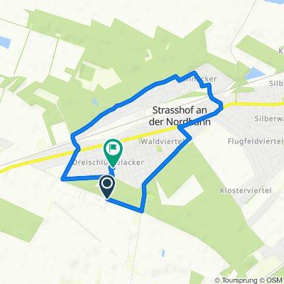 Gerade Fahrt in Strasshof an der Nordbahn