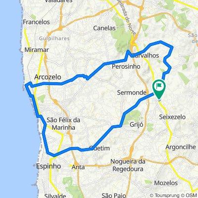 Passeio rápido em Vila Nova de Gaia