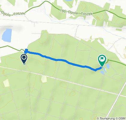 Steady ride in Kolonowskie