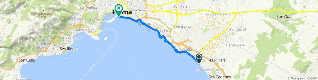 Percorso ad alta velocità in Palma
