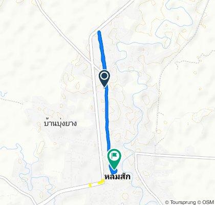 Easy ride in Lom Sak