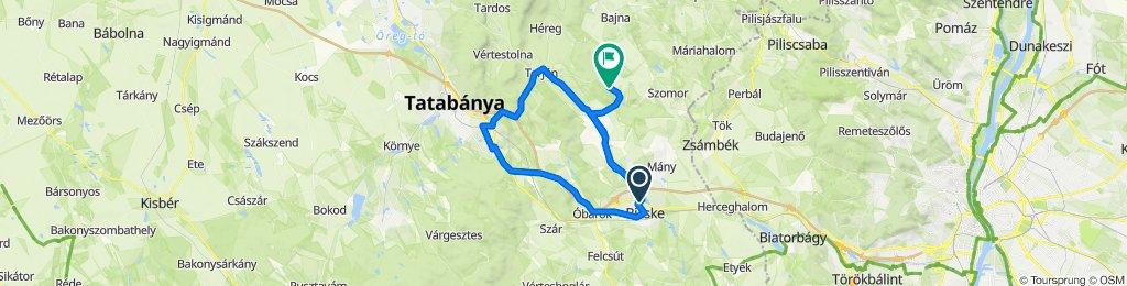 Bicske - Tarján - Tatabánya - Óbarok - Bicske bejárt nyomvonal (Garmin)