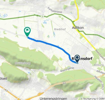 Easy ride in Dällikon