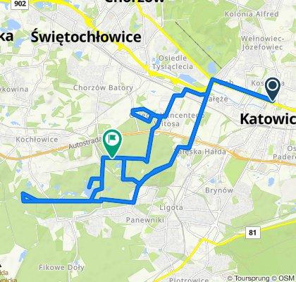 🚴🏼♂️ Katowice ➡️ Lasy Panewnickie / Czarny Staw, Uroczysko Buczyna