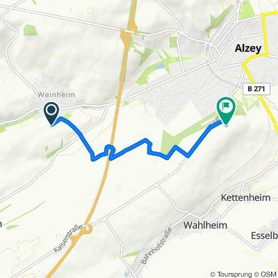 Alzey - Wartbergturm, 5 km, 30 mh