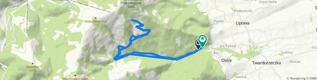 Spokojna trasa w Lipowa