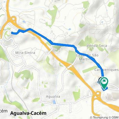 Rota repousante em Agualva