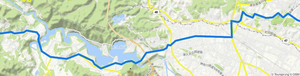 Sagamiko to home