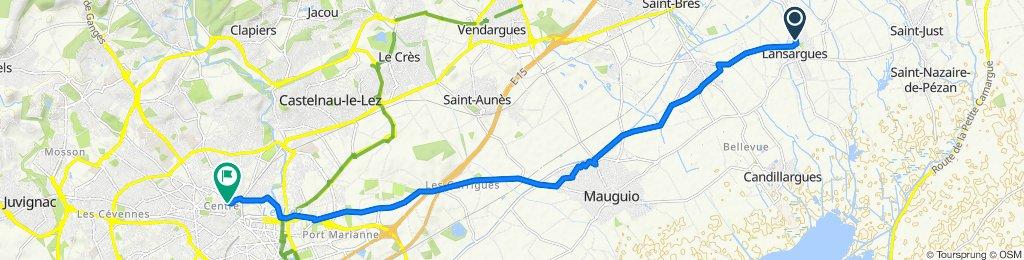 De Avenue René Guiraud 106, Lansargues à Rue Sainte-Ursule 17, Montpellier
