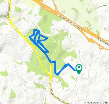 10 km Sabine
