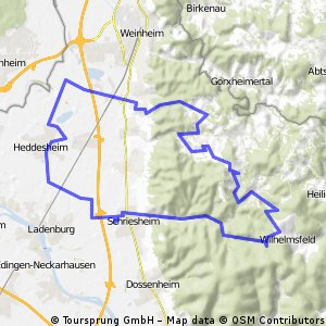 Schriesheimer Odenwaldrunde