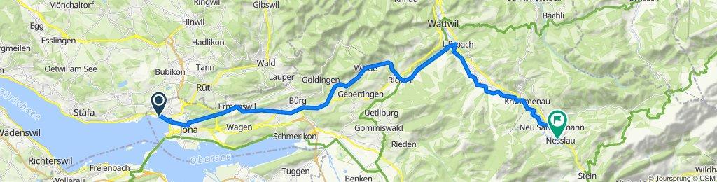 Variante 1: Jona-St. Gallenkappel-Rüeterswil-Walde-Ricken-Nesslau