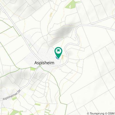 Langsame Fahrt in Aspisheim
