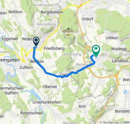 Moderate Route in Birmensdorf ZH