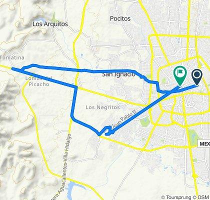 Paseo en Aguascalientes