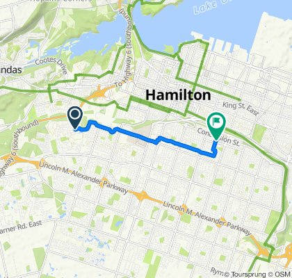 Paseo rápido en Hamilton