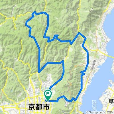 2020-5田途前百花芹江