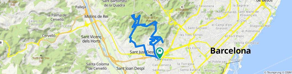 salida Esplugas Vall de Sant Feliu 17/05/20