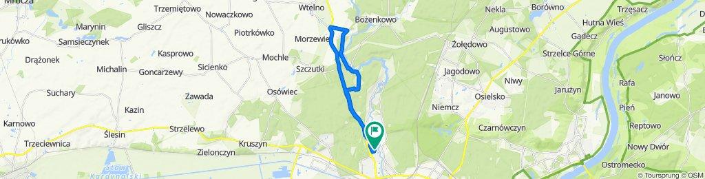 Bydgoszcz Janowo Tryszczyn