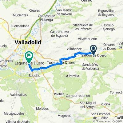 Sardon de Duero - Valladolid