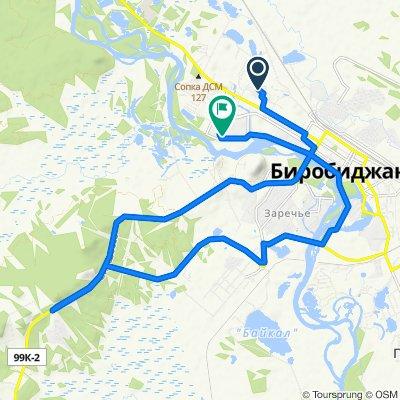 Легкий маршрут в Биробиджан