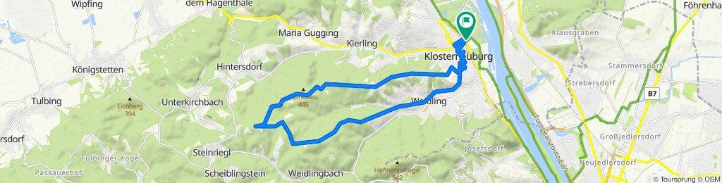 2020-05-18 1:39 Babenberger Strecke