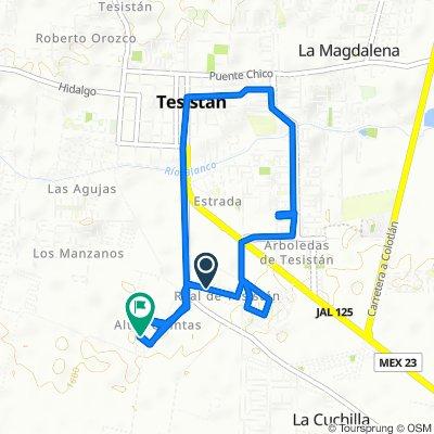 Calle Circuito Real de Tesistan 288, Tesistán to Avenida Jalisco 900, Tesistán