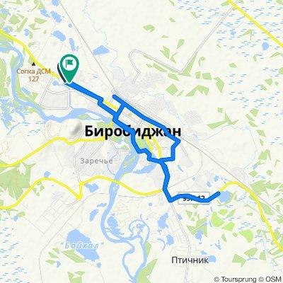 Неторопливый маршрут в Биробиджан