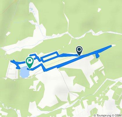 Неторопливый маршрут в Куйвозовское