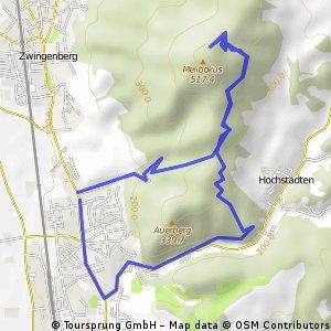 Auerbacher Schloß und Melibokustour