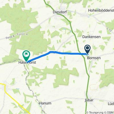Entspannende Route in Diesdorf
